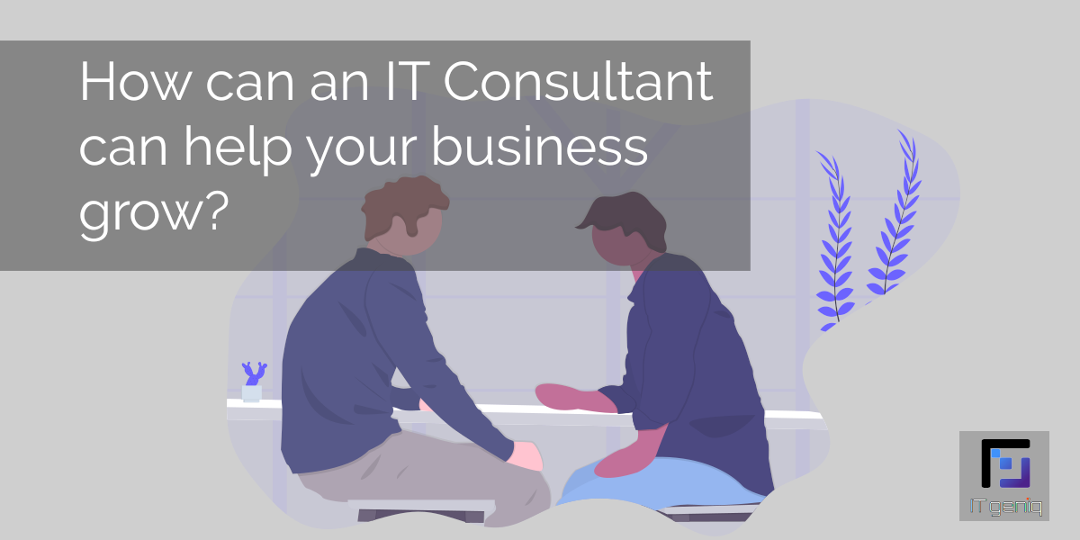 How can an IT Consultant can help your business grow?